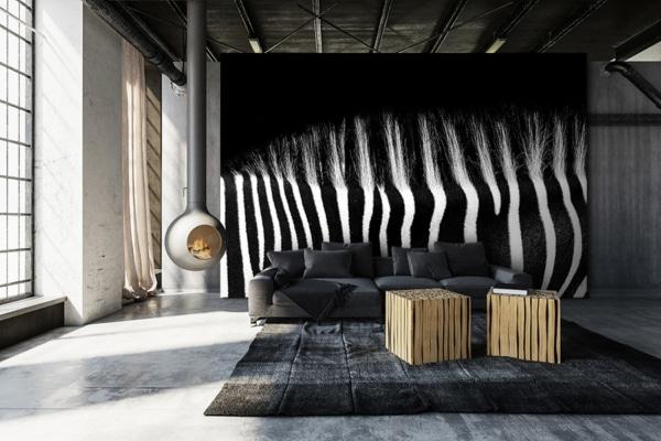 photo dos zebre papierpeint