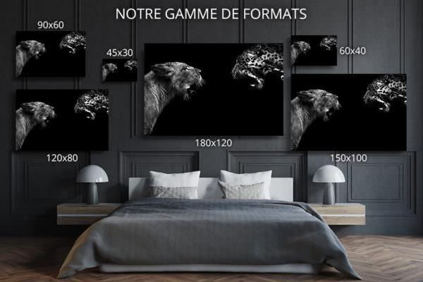 cadre photo felides deco formats