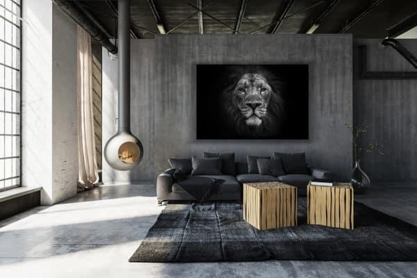 cadre photo lion dafrique deco