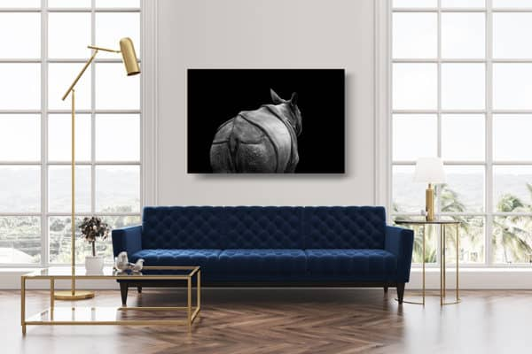 cadre-photo-rhinoceros-indien-deco-1