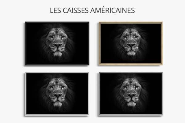 cadre photo roi dafrique caisse americaine