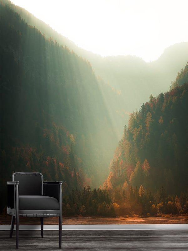 photo brume matinale papier peint