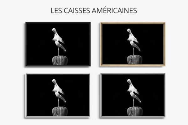 cadre photo cigogne caisse americaine