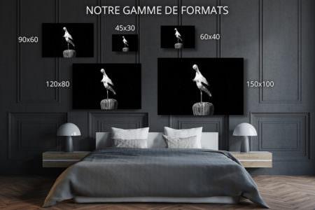cadre photo cigogne deco formats