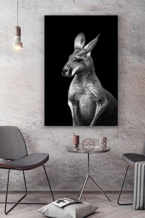 cadre photo kangourou sans lueur deco