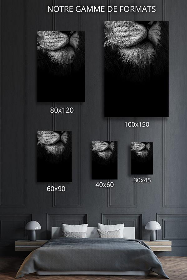 cadre photo bouc du roi formats