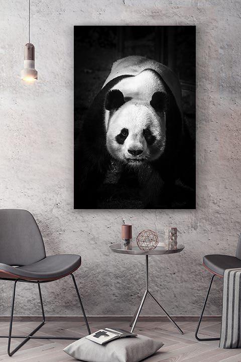 cadre-photo-panda-dominant-deco-1