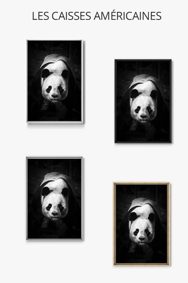 cadre photo panda dominant caisse americaine