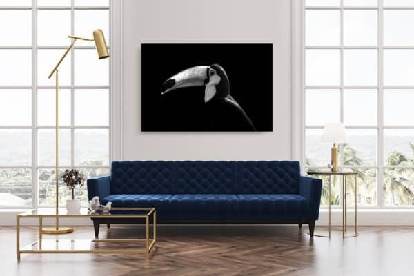cadre photo toucan deco