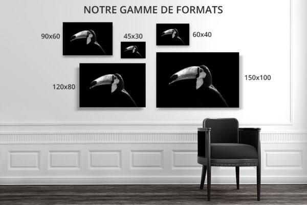 cadre photo toucan deco formats