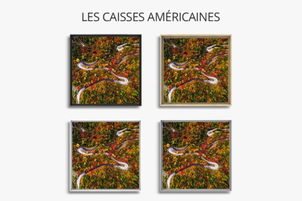 photo automne slovene caisse americaine