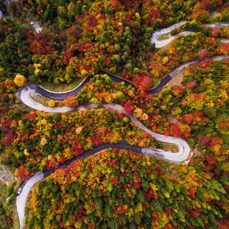 photo-automne-slovene-hugo-grandcolas-carre-100_100