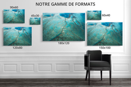 PHOTO AU COEUR BARRIERE CORAIL FORMATS DECO