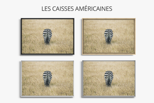 PHOTO CACHE CACHE CAISSES AMERICAINES