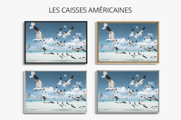 PHOTO Envol CAISSES AMERICAINES