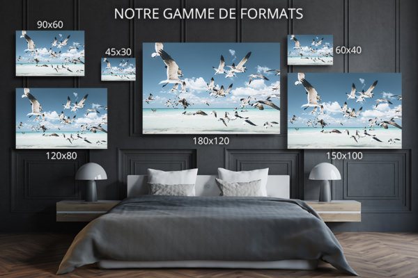 PHOTO Envol FORMATS DECO