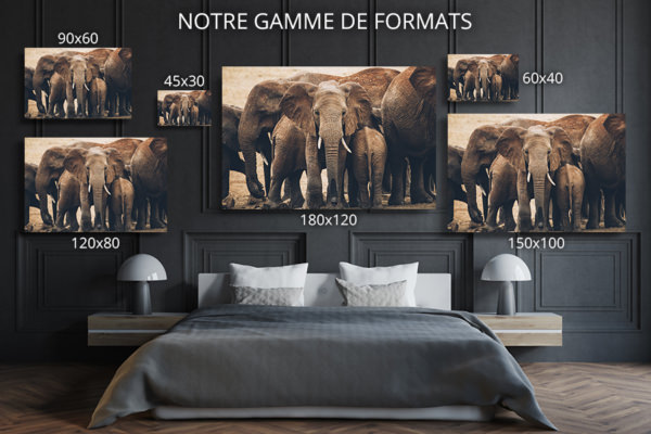 PHOTO LeTroupeau FORMATS DECO