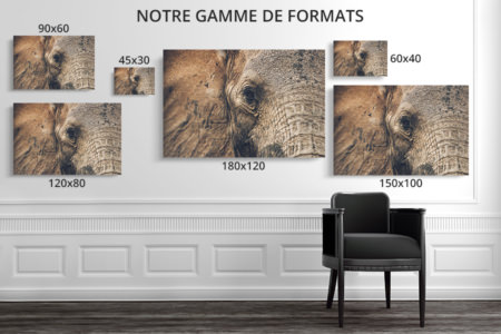 PHOTO Lesyeuxdoux FORMATS DECO