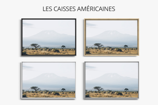 PHOTO MOMENTS EN FAMILLE CAISSES AMERICAINES
