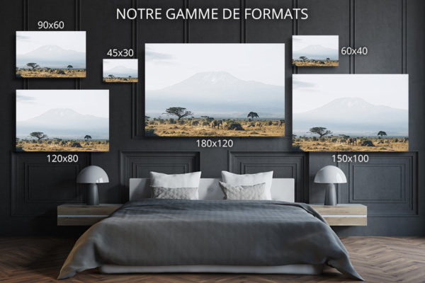 PHOTO MOMENTS EN FAMILLE FORMATS DECO