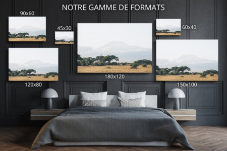 PHOTO_MONT-KILIMANDJARO_FORMATS_DECO