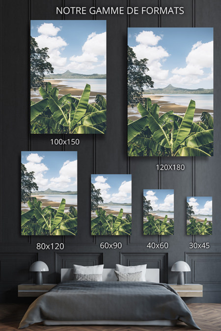 PHOTO PitonTropical FORMATS DECO