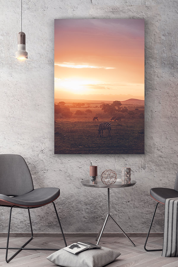 PHOTO QUAND LA SAVANE SEMBRASE DECO