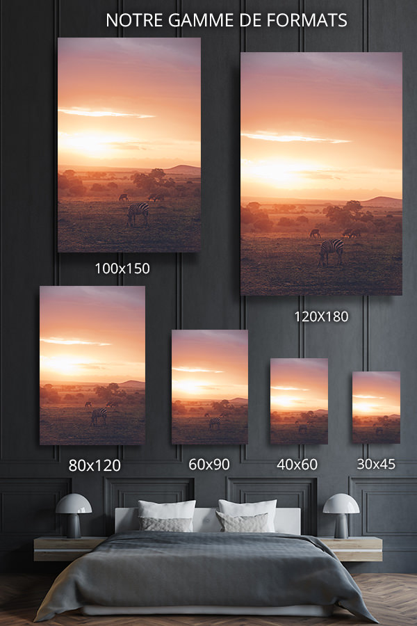 PHOTO QUAND LA SAVANE SEMBRASE FORMATS DECO