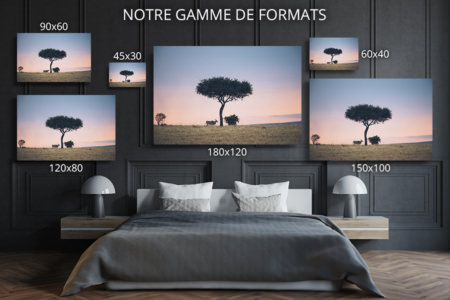 PHOTO Savane FORMATS DECO