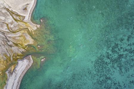 Photo des milliers de belugas ledoux