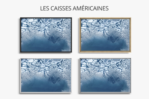 Photo formation de la banquise caisse americaine