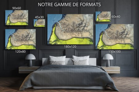 Photo larbre de la vie formats deco