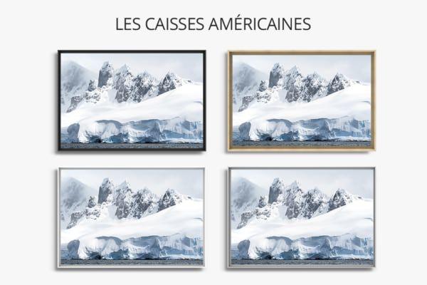 Photo les dents de larctique caisse americaine