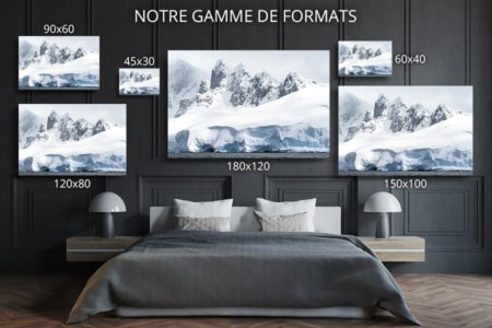 Photo les dents de larticque formats deco