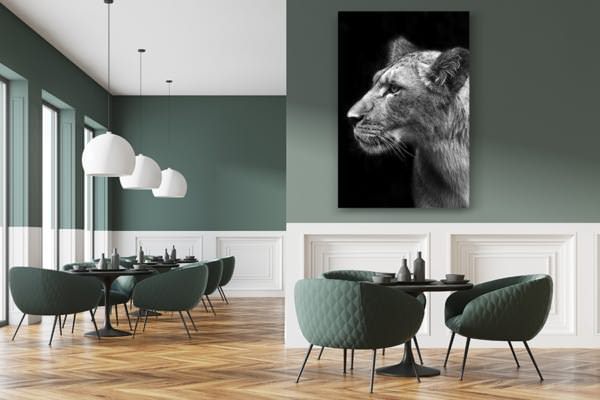 PHOTO Lionnescruteuse DECO