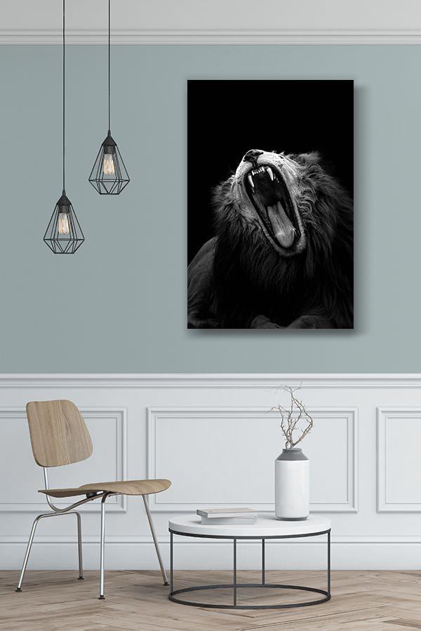 la-vie-difficile-d-un-lion-mordacq