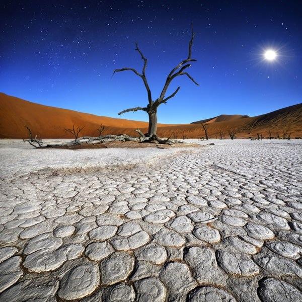 PHOTO Baobab au coucher du soleil patrick Galibert carre