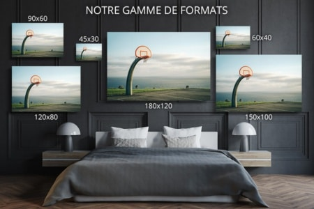PHOTO Le Brontosaure FORMAT DECO