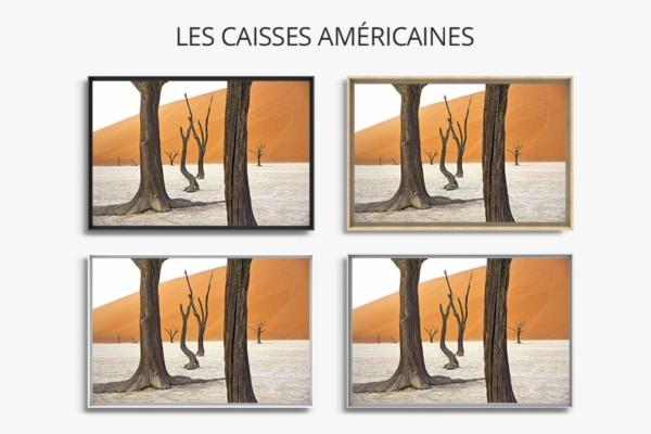 PHOTO cache cache CAISSES AMERICAINES