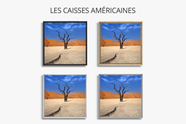 PHOTO courbes et matieres caisses americaines