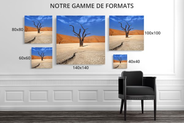 PHOTO courbes et matieres formats