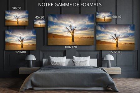 PHOTO le eme element formats