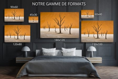 PHOTO symphonie formats deco