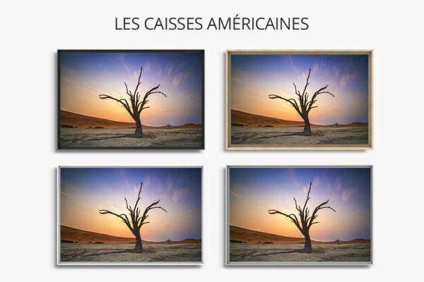 PHOTO tortueux et colore caisses americaines