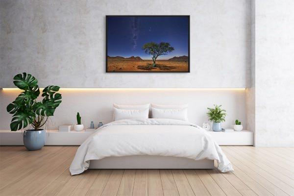 Photo Namibie acacia au clair de lune deco