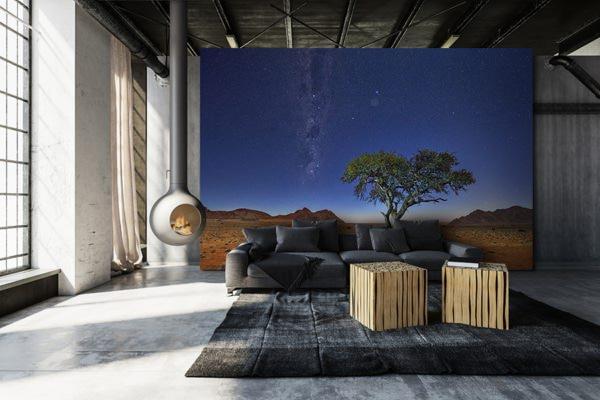 Photo Namibie acacia au clair de lune papier peint