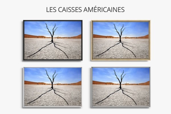 Photo Namibie ombre et silhouette caisses americaines