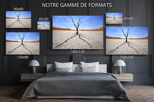 Photo Namibie ombre et silhouette formats