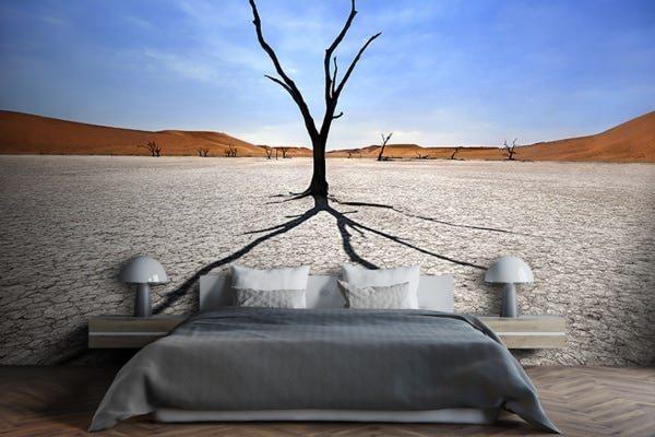 Photo Namibie ombre et silhouette papier peint