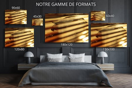 photo parkinglotelegance format deco